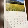 株主優待の各社のカレンダーを比べてみました② ~ANA・Canon・JT~