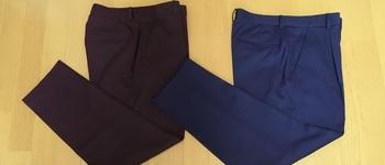 【ユニクロ】EZYアンクルパンツ購入/晩夏~初秋に着まわすボトムス