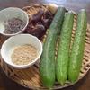 胡瓜の佃煮