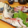 福井県夏の海鮮グルメ6選はこれ!季節の味わいはここから始まる!