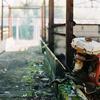 牛舎の廃屋