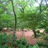 初めてのキャンプ(自然の森ファミリーオートキャンプ場)を思い出してみる