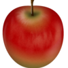 りんご型って?