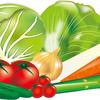 キャベツとグリーンボールの違いがわからん?腸活力を上げる得する食べ方