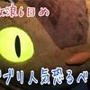 九州放浪記 6日目