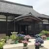 武蔵嵐山「金泉寺の紫陽花」と「家の日々草」