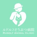 ルドルフのブログ