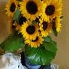 綺麗な花でお出迎え!