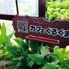 沖縄南部へ行くならランチは『カフェくるくま』へ!