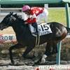 タコイチの【今週の勝負レース】4歳上1000万!