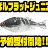 【一誠】人気ギル型ワームのダウンサイズモデル「ギルフラットジュニア」通販予約受付開始!