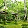 京都 嵯峨野の祇王寺は、苔ともみじに満ちた空間で、ファンにはたまらない場所です。(Kyoto, Giouji-temple)