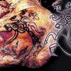冷凍ミイラ アイスマン 5300年前より現代に親族が確認される