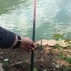 脳内BGM #TheBoom 「釣りに行こう」