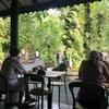 【シンガポール】ボタニックガーデンで朝食を