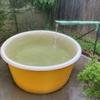 【えびの市】あきしげゆ~ヌルヌルした温泉にビックリ!源泉かけ流しの優しい温泉