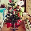 あら!小さくなった?!クリスマスツリー