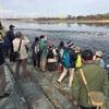 多摩川探鳥会は温かな鳥見日和!