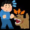 チャイムが鳴ると吠えてしまう犬のタイプ別対処法