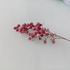 胡椒の花と実
