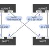 Cumulus Linux の仮想アプライアンス「Cumulus VX」を Vagrant で構築する