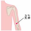 ツボの紹介。肩から上腕にかけての痛み、肘の腫れに天井(てんせい)