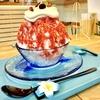 かき氷:【旅グルメ沖縄】南国気分を味わえるカフェ!沖縄の海氷を削ったリゾート系かき氷専門店 the Sea