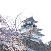 今日のまち散歩。街は春の花で、とってもにぎやかでした。