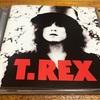 THE SLIDER (ザ・スライダー) / T.REX