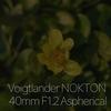 Voigtlander NOKTON 40mm F1.2 Aspherical もうすぐ冬が明ける!α7Rⅲと共に