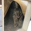 京都の「佐々木酒造」では、猫従業員もお仕事中!