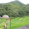 WWOOFJapan体験談 in小豆島 まとめ