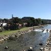 岐阜県観光大使のつれづれ~今日、高山祭だってよ。~