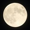 ✨乙女座の満月☽スーパームーン~Super Full Moon in Virgo~