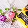 文章の書き方のポイント『新しい文章力の教室』