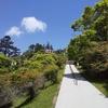 今年も三峯神社へ商売繁盛のお札をと参拝したのですが、コロナ対策のためご神木には。。。