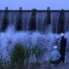 【写真】多摩川の野鳥と作業員。たまに京王線