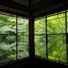 """10月中旬の"""" 瑠璃光院 """"はまだまだ緑が美しく、混んでません🌿"""