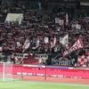 2019football観戦記#2:YBCルヴァンカップ 対C大阪戦