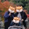 嵐山天龍寺へ