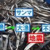 【前兆】サンマ大漁→不漁は北海道地震の前兆だった?+ギリシャで津波発生+沖縄で群発