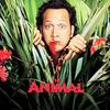 全米で大ヒットを記録した動物ファミリーコメディ ◆ 「アニマルマン」