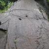 恐竜の足跡と化石発掘体験地  神流町