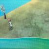 【ポケットモンスター・ムーンプレイ日記7】3番道路とメレメレの花園でポケモン集め♪( ´▽`)