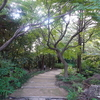 白鳥庭園 2020.10.24