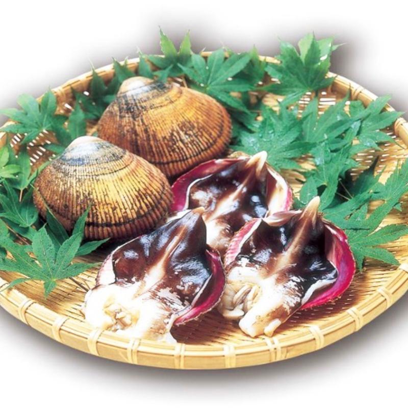 お酒の肴にしたい!幻の食材「丹後とり貝」を味わう