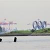 『オリンピック競技場』を水上から巡ってみた【前編】