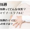 【妊娠28週】妊娠後期の8ヶ月に突入!妊娠28週ってどんな状態?|妊娠28週のママと赤ちゃんの様子は?