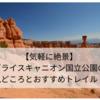 【気軽に絶景】アメリカ・ブライスキャニオン国立公園の見どころとおすすめトレイル!