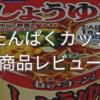 【低たんぱく麺】ホリカ しょうゆラーメンを食べました